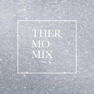 THEMOMIXX2